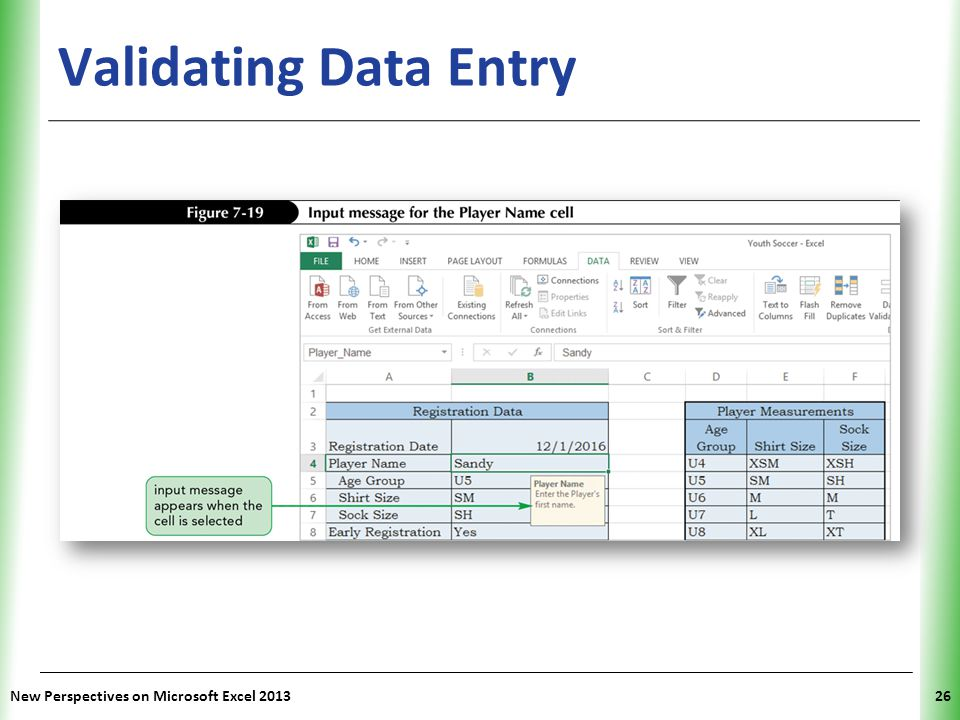 Validating Data Entry New Perspectives on Microsoft Excel 2013