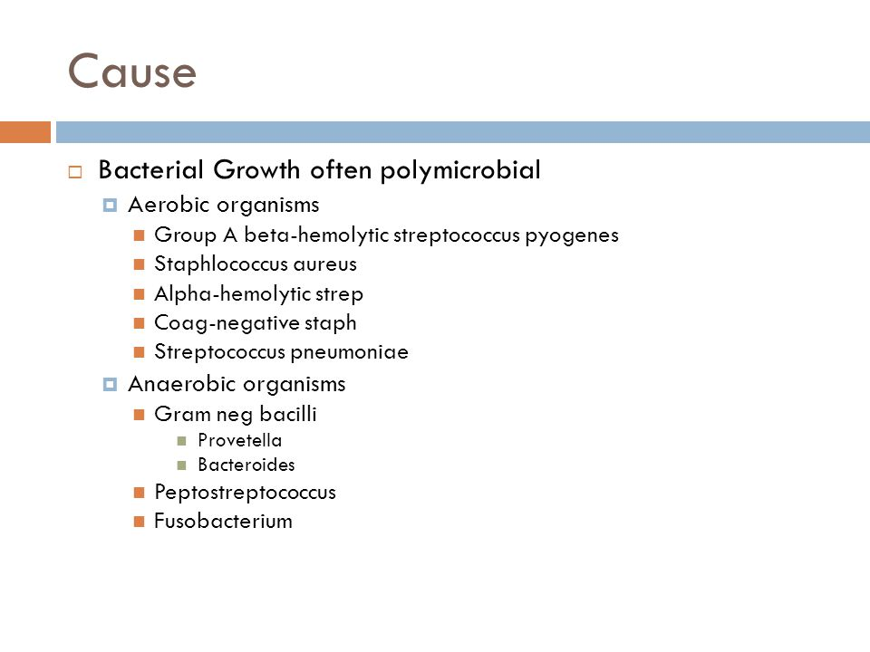 Cause Bacterial Growth often polymicrobial Aerobic organisms