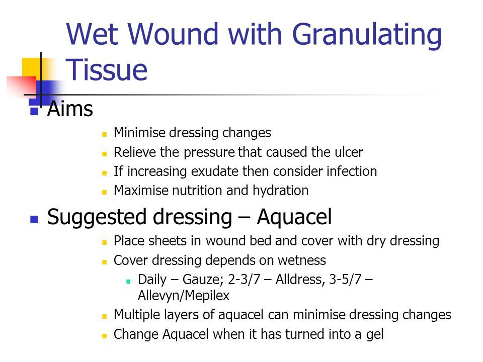 Wet Wound with Granulating Tissue