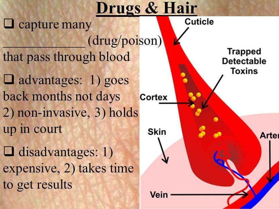 Drugs & Hair capture many ____________ (drug/poison)
