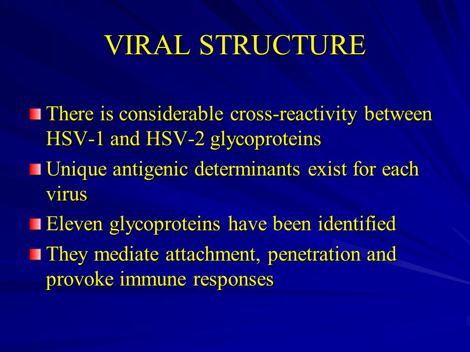 VIRAL STRUCTURE There is considerable cross-reactivity between HSV-1 and HSV-2 glycoproteins. Unique antigenic determinants exist for each virus.