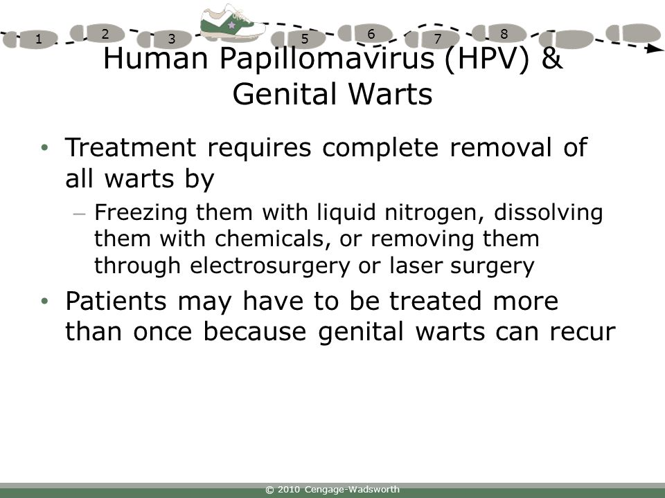 Human Papillomavirus (HPV) & Genital Warts