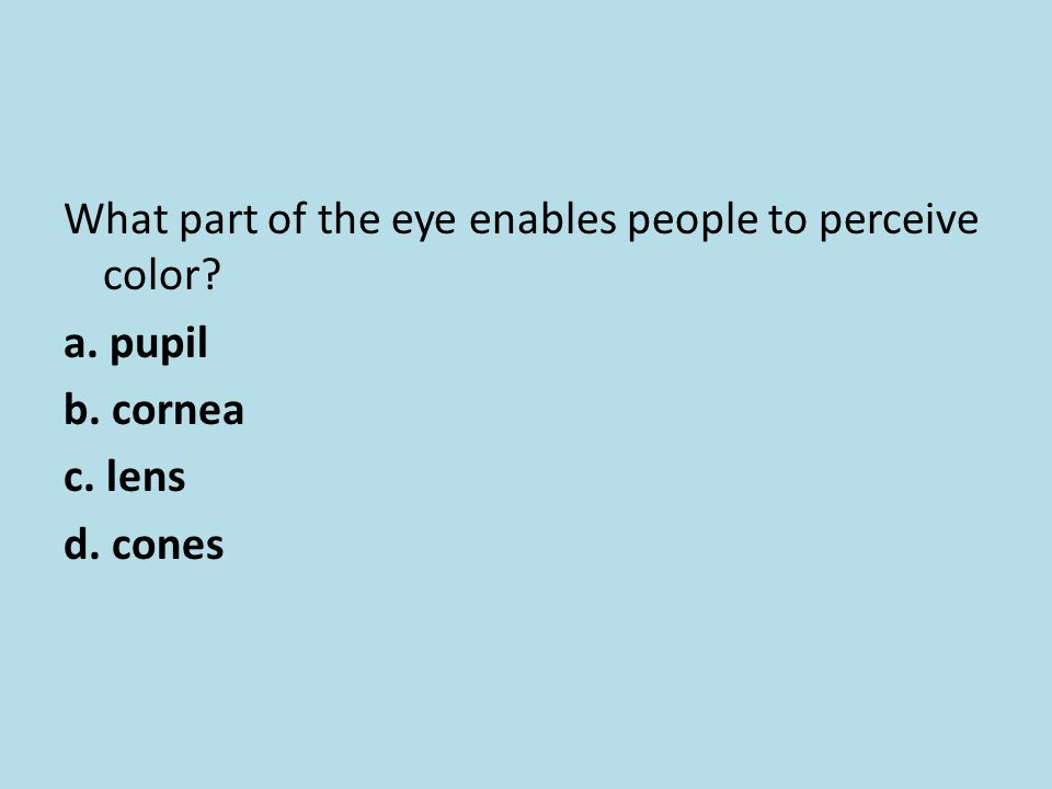 What part of the eye enables people to perceive color. a. pupil b