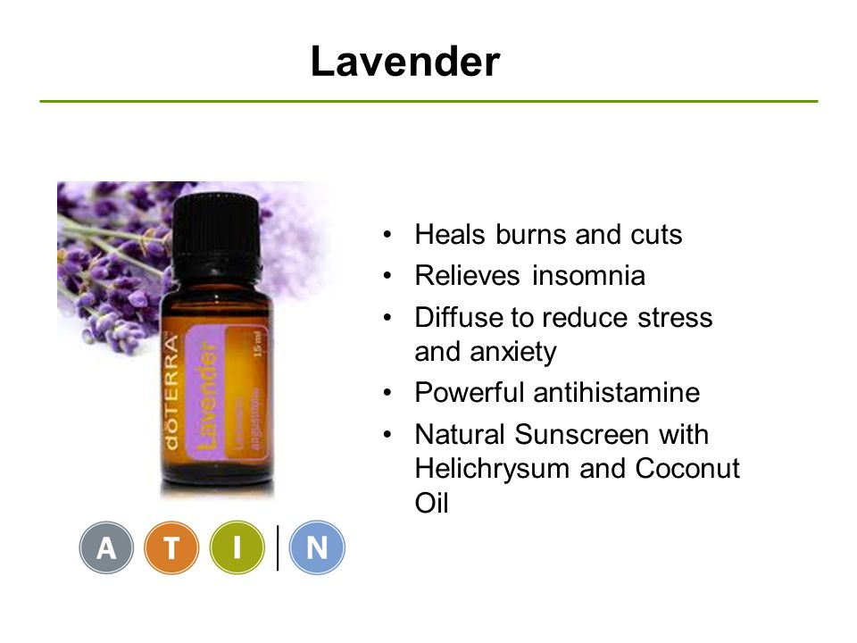 Lavender Heals burns and cuts Relieves insomnia