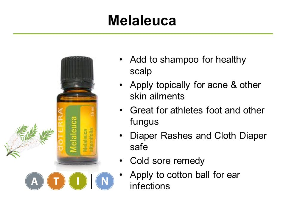 Melaleuca Add to shampoo for healthy scalp