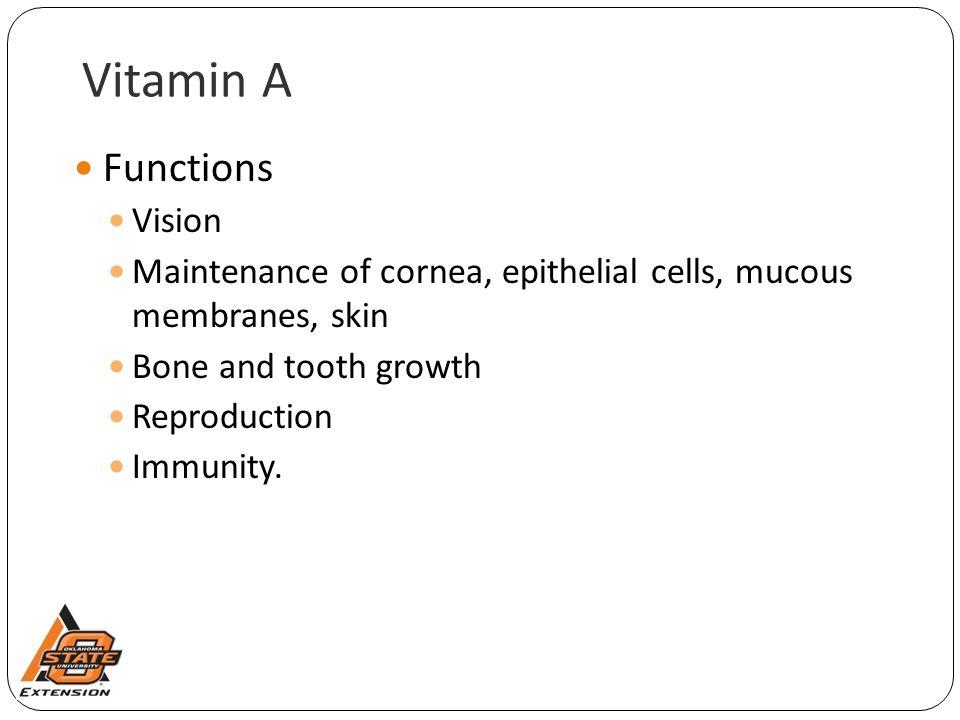 Vitamin A Functions Vision