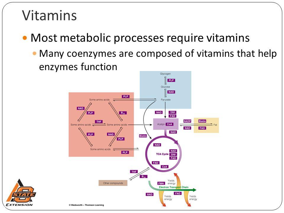 Vitamins Most metabolic processes require vitamins