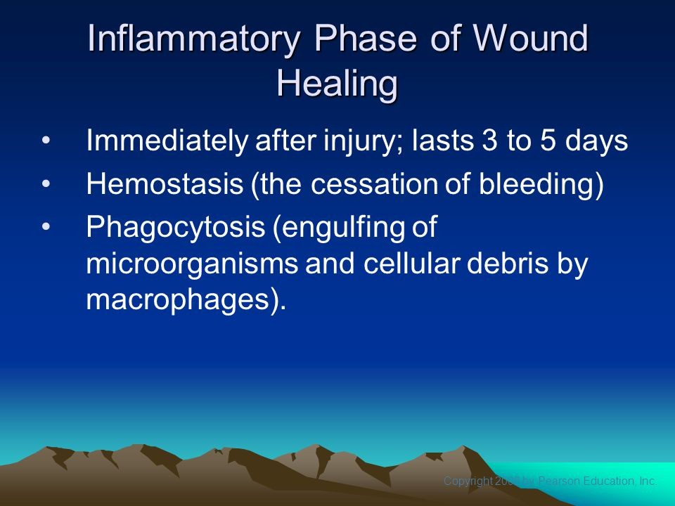 Inflammatory Phase of Wound Healing