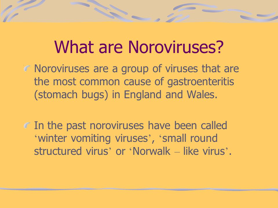 What are Noroviruses Noroviruses are a group of viruses that are the most common cause of gastroenteritis (stomach bugs) in England and Wales.
