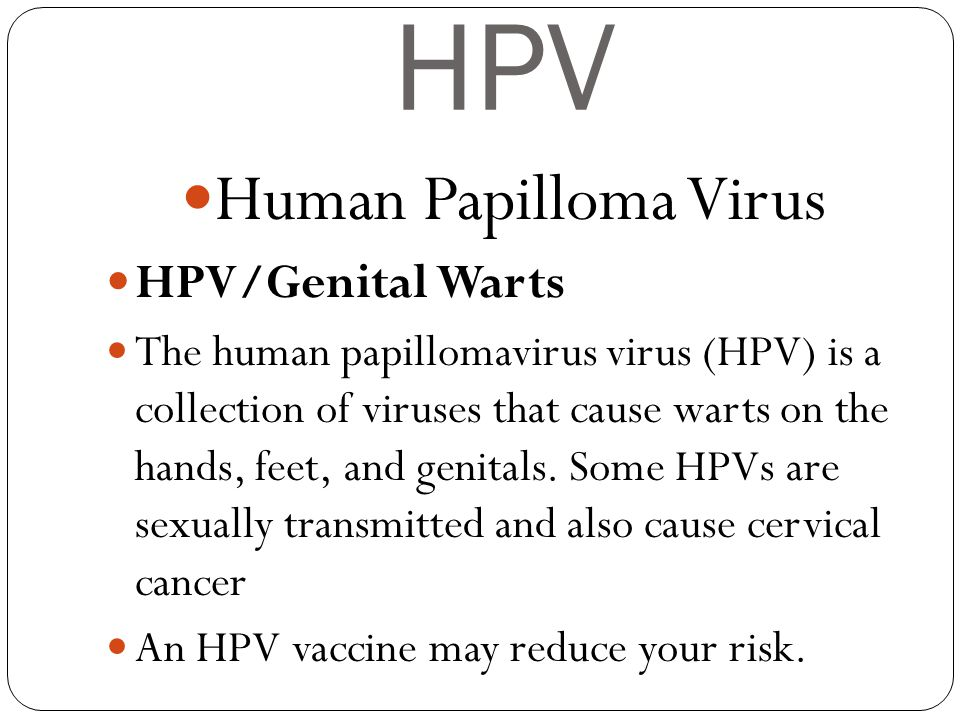HPV Human Papilloma Virus HPV/Genital Warts
