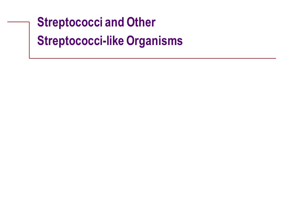 Streptococci and Other Streptococci-like Organisms
