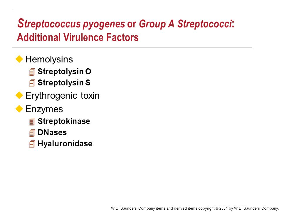 Streptococcus pyogenes or Group A Streptococci: Additional Virulence Factors