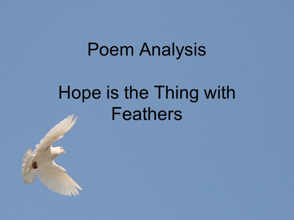 Poem Analysis Hope is the Thing with Feathers