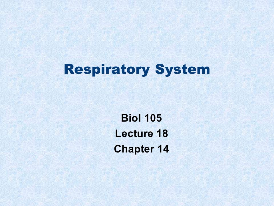 Respiratory System Biol 105 Lecture 18 Chapter 14