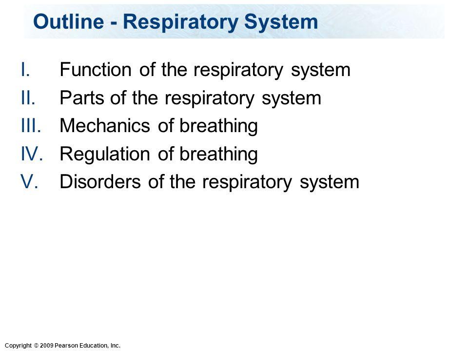 Outline - Respiratory System