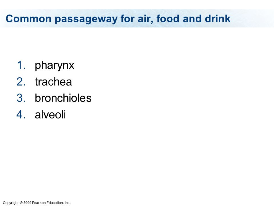 Common passageway for air, food and drink