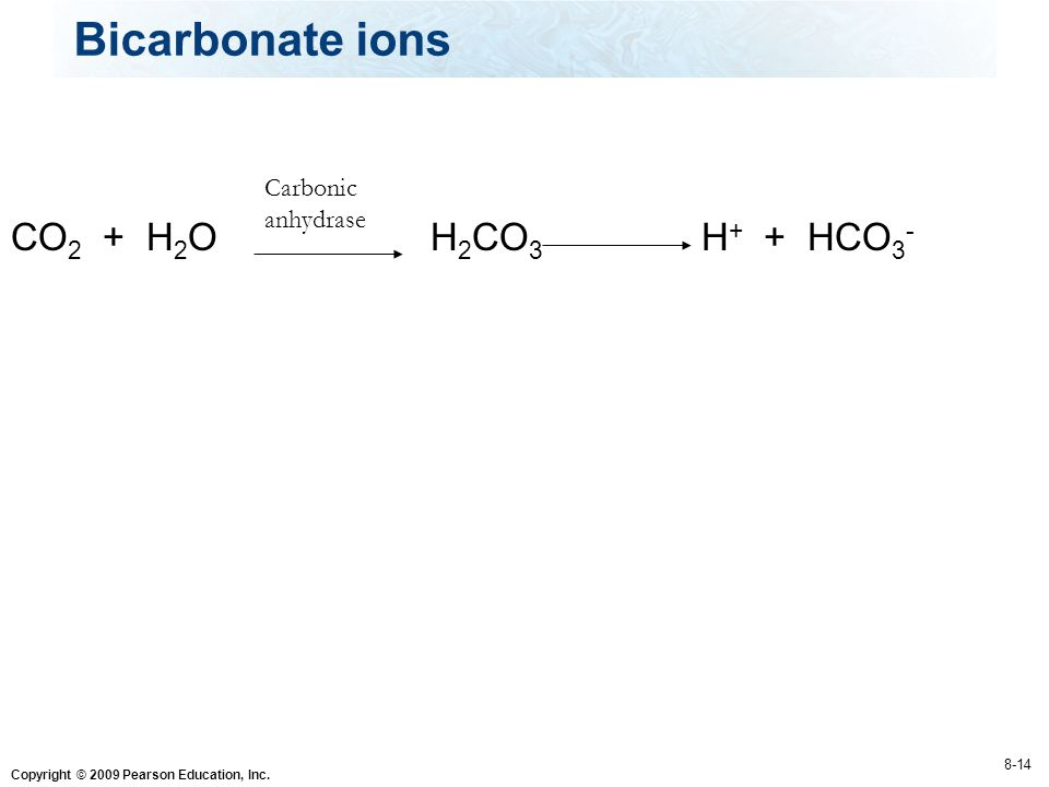 Bicarbonate ions CO2 + H2O H2CO3 H+ + HCO3- Carbonic anhydrase 8-14