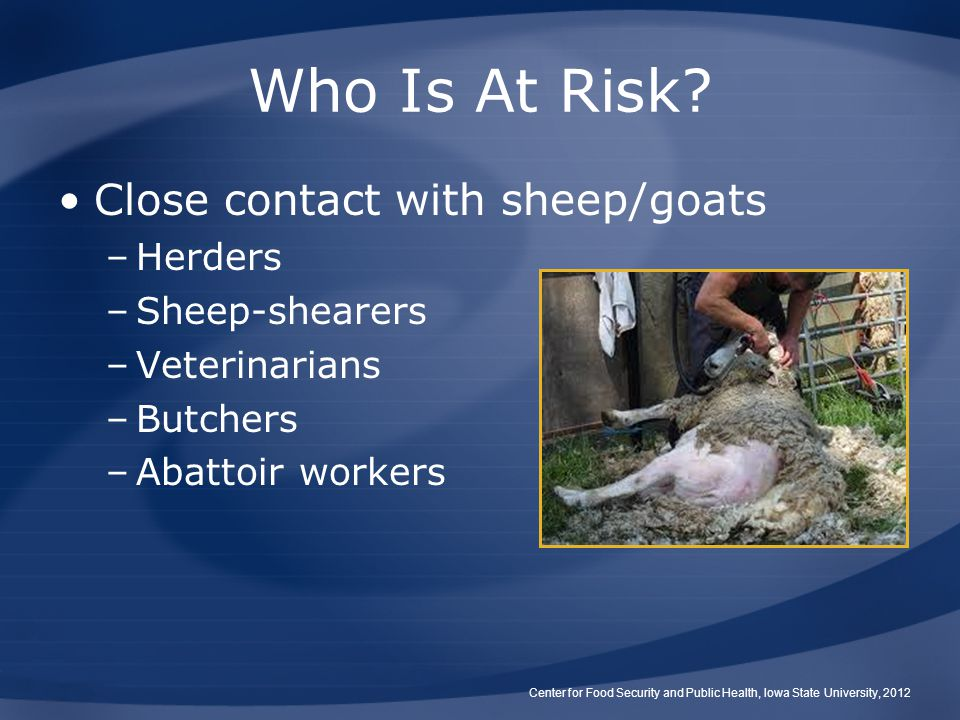 Who Is At Risk Close contact with sheep/goats Herders Sheep-shearers