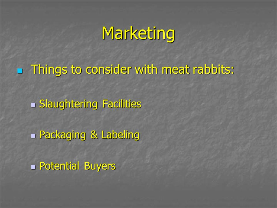 Marketing Things to consider with meat rabbits: