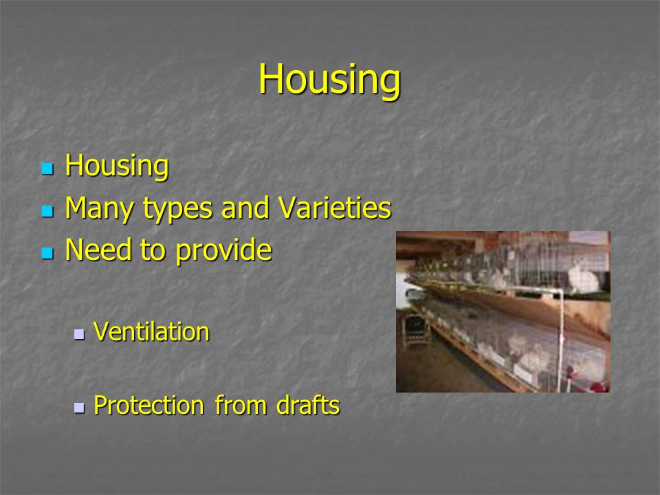 Housing Housing Many types and Varieties Need to provide Ventilation