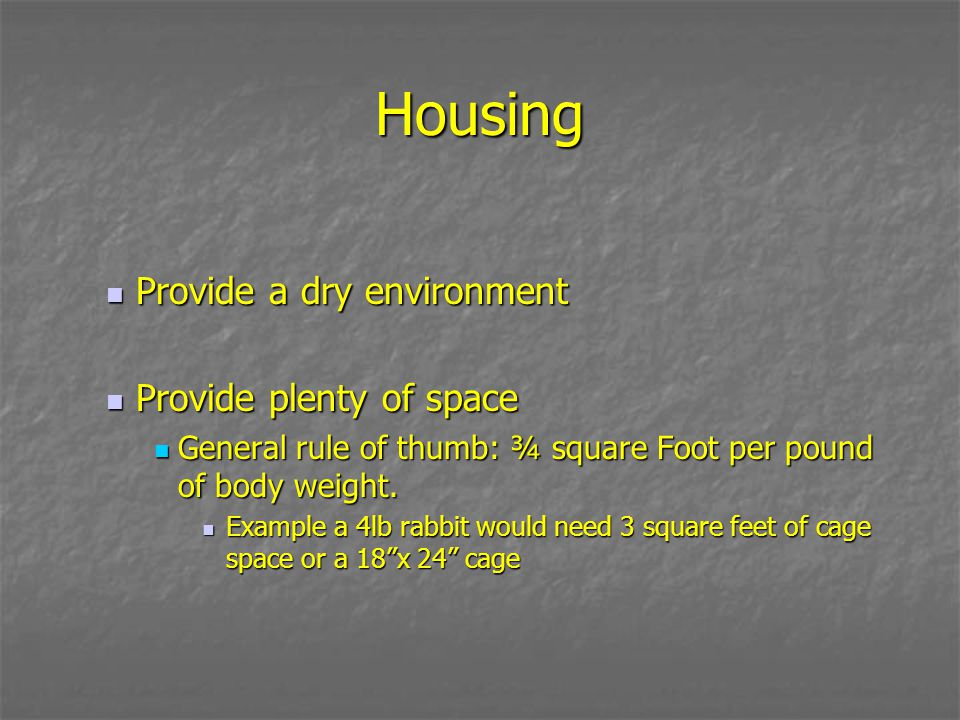 Housing Provide a dry environment Provide plenty of space
