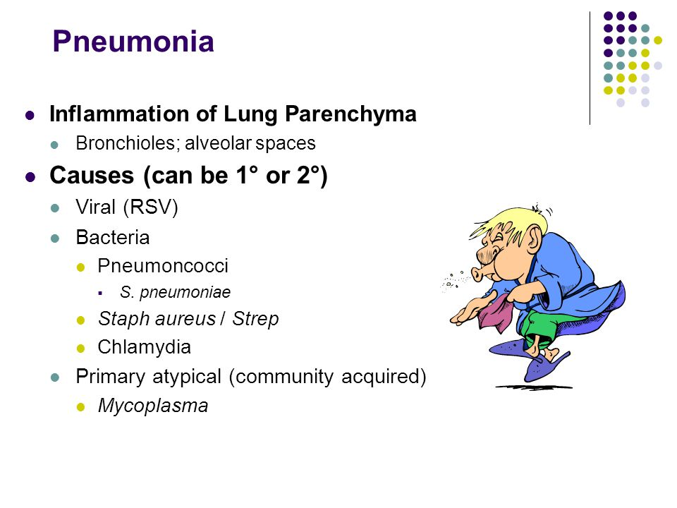Pneumonia Causes (can be 1° or 2°) Inflammation of Lung Parenchyma