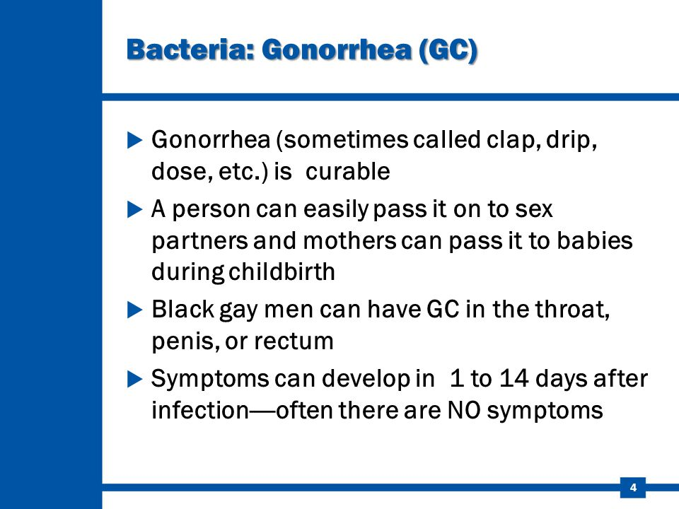 Bacteria: Gonorrhea (GC)