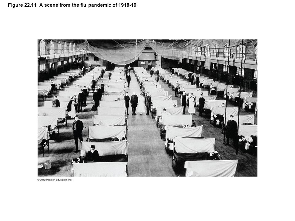 Figure 22.11 A scene from the flu pandemic of 1918-19
