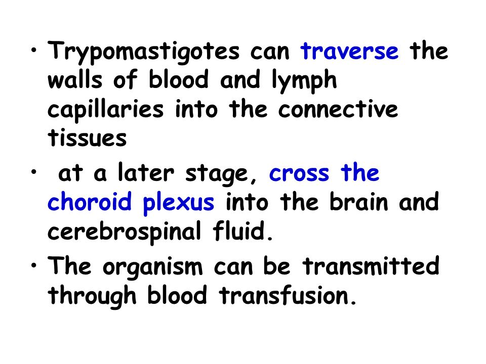 Trypomastigotes can traverse the walls of blood and lymph capillaries into the connective tissues
