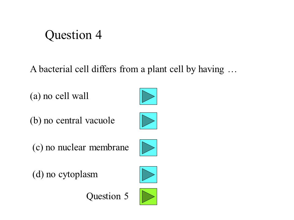 Question 4 A bacterial cell differs from a plant cell by having …
