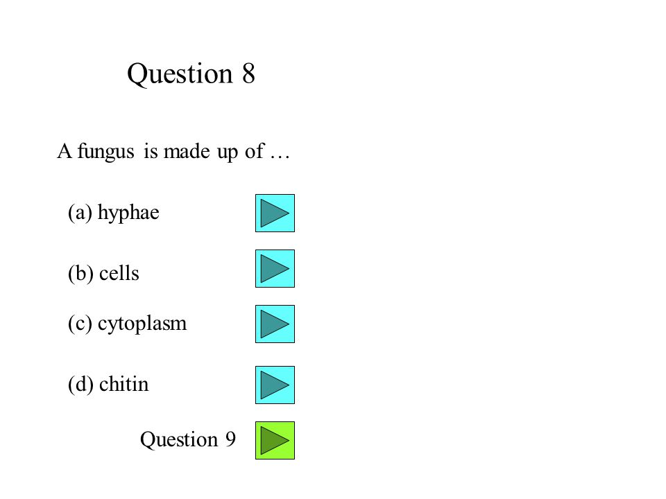 Question 8 A fungus is made up of … (a) hyphae (b) cells (c) cytoplasm
