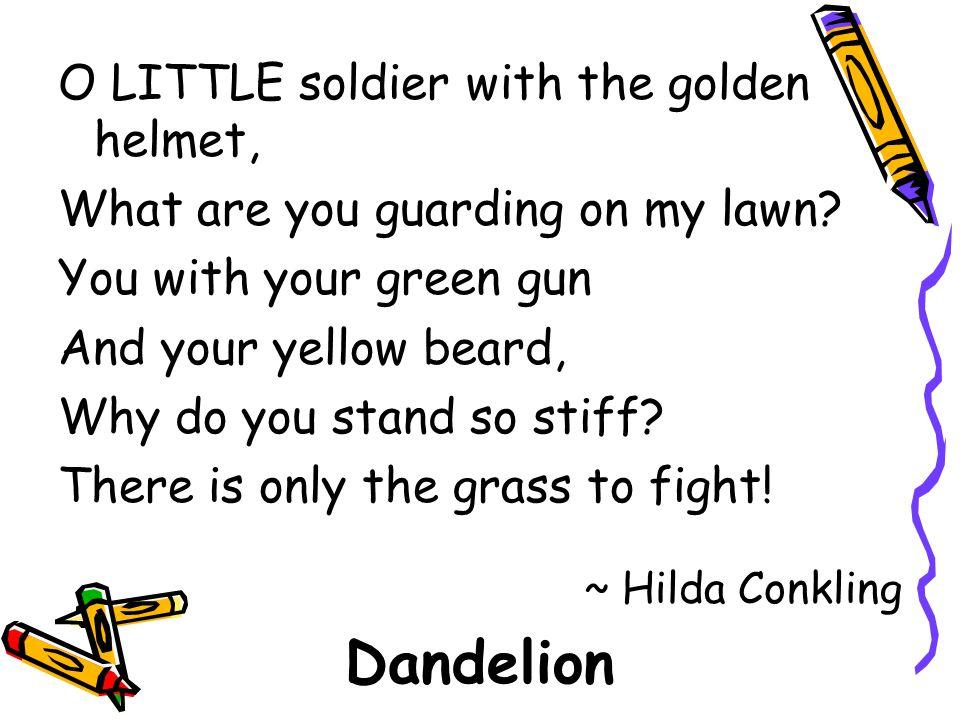 Dandelion O LITTLE soldier with the golden helmet,
