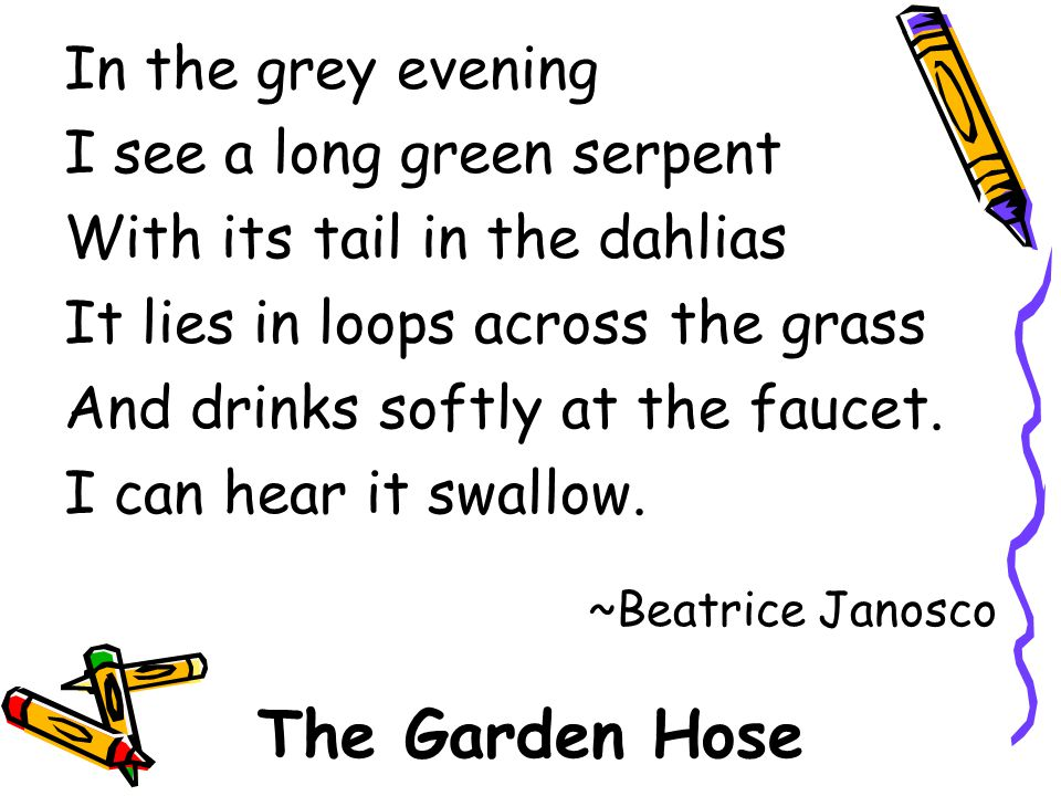 The Garden Hose In the grey evening I see a long green serpent