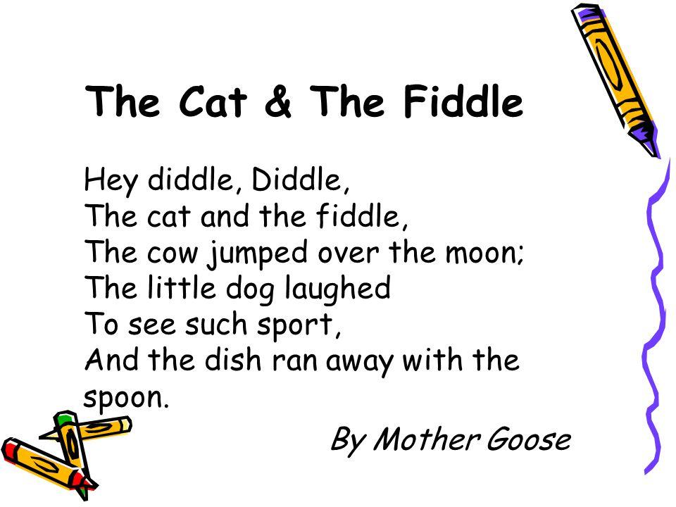 The Cat & The Fiddle