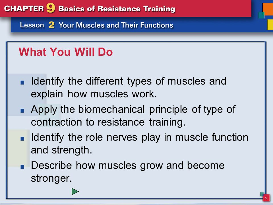 What You Will Do Identify the different types of muscles and explain how muscles work.