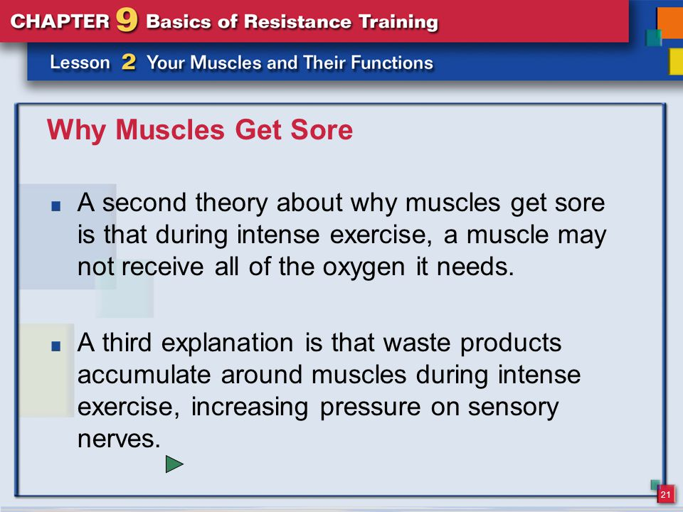 Why Muscles Get Sore A second theory about why muscles get sore is that during intense exercise, a muscle may not receive all of the oxygen it needs.