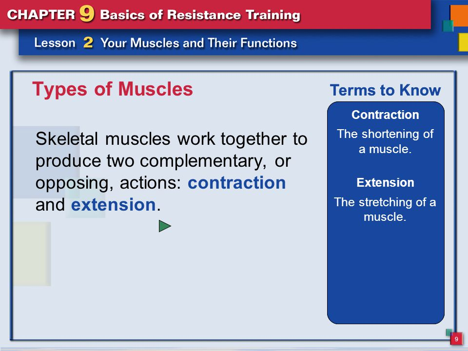 Types of Muscles Contraction. The shortening of a muscle. Terms to Know. Contraction. The shortening of a muscle.