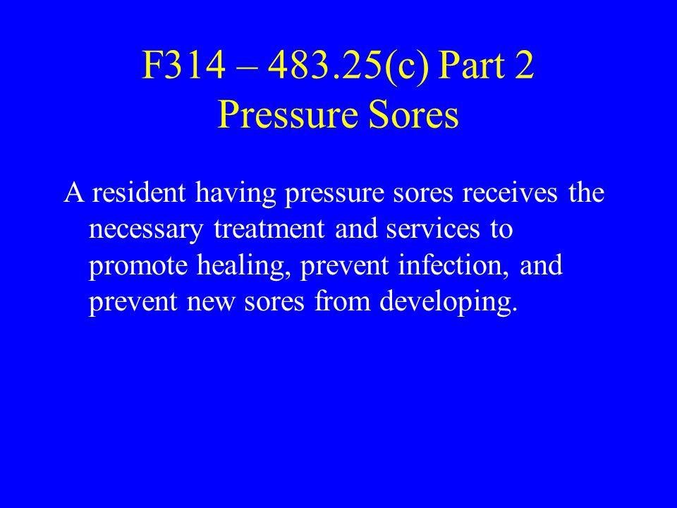 F314 – 483.25(c) Part 2 Pressure Sores