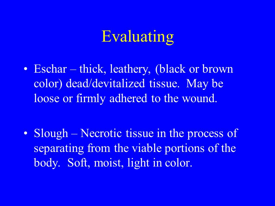 Evaluating Eschar – thick, leathery, (black or brown color) dead/devitalized tissue. May be loose or firmly adhered to the wound.