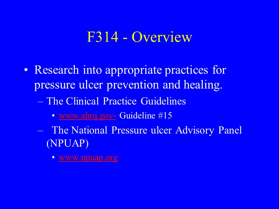 F314 - Overview Research into appropriate practices for pressure ulcer prevention and healing. The Clinical Practice Guidelines.