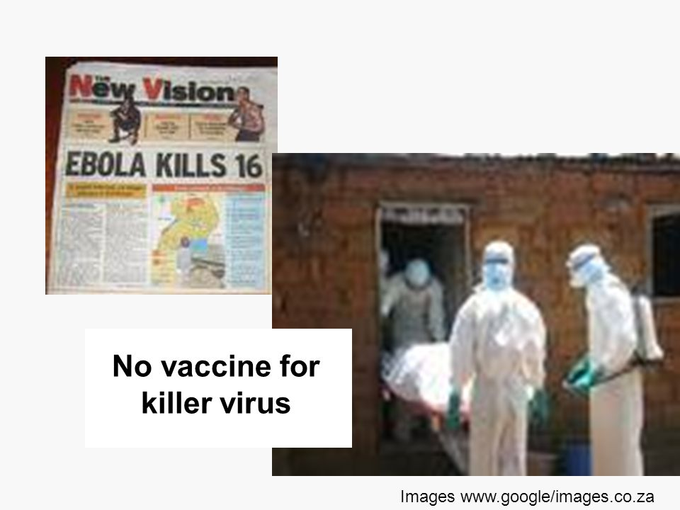 No vaccine for killer virus
