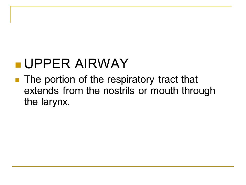 UPPER AIRWAY The portion of the respiratory tract that extends from the nostrils or mouth through the larynx.