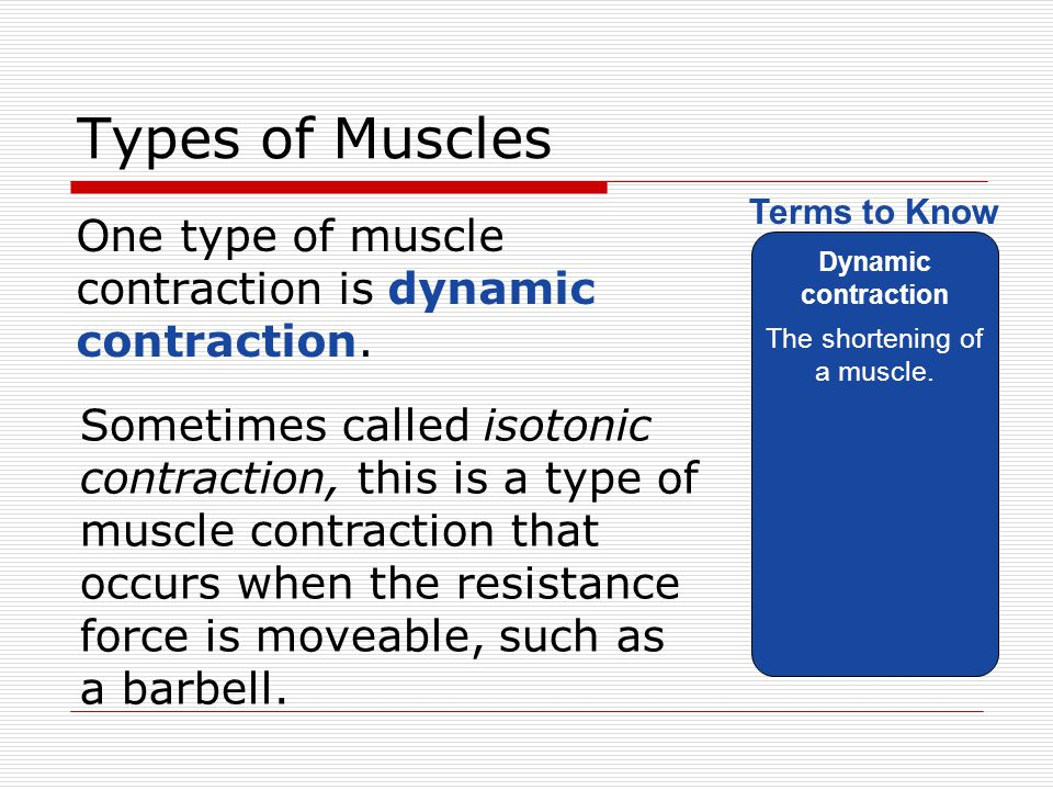 Muscular Strength Lesson ppt video online download