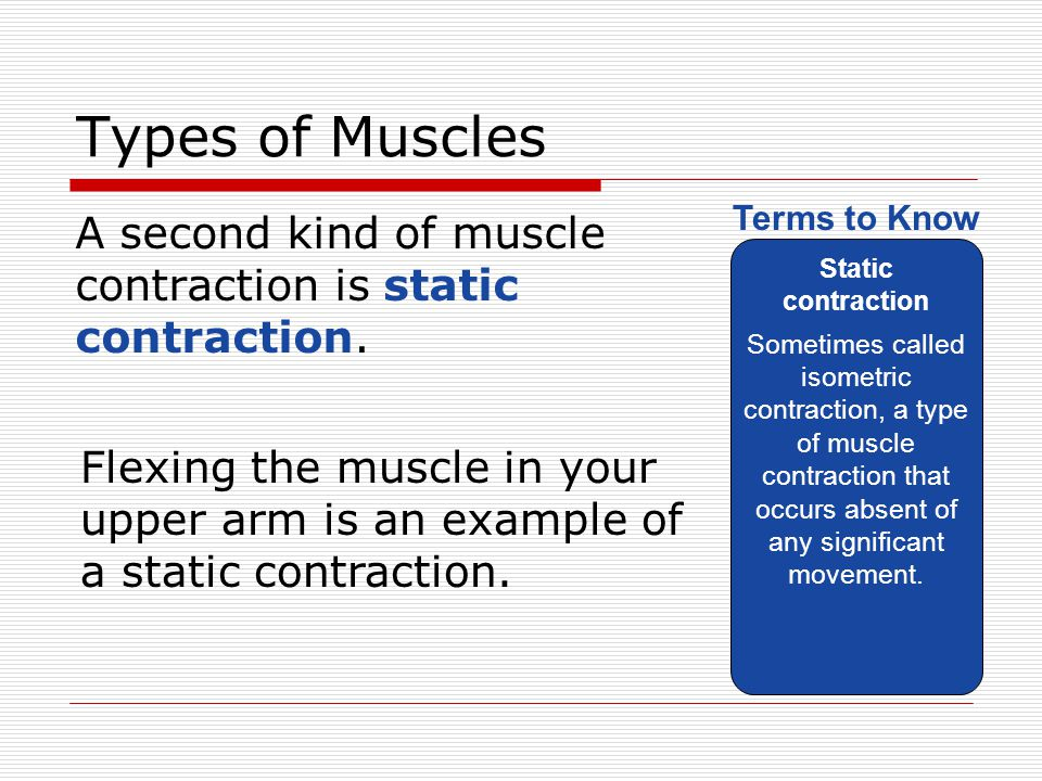 Types of Muscles Static contraction.