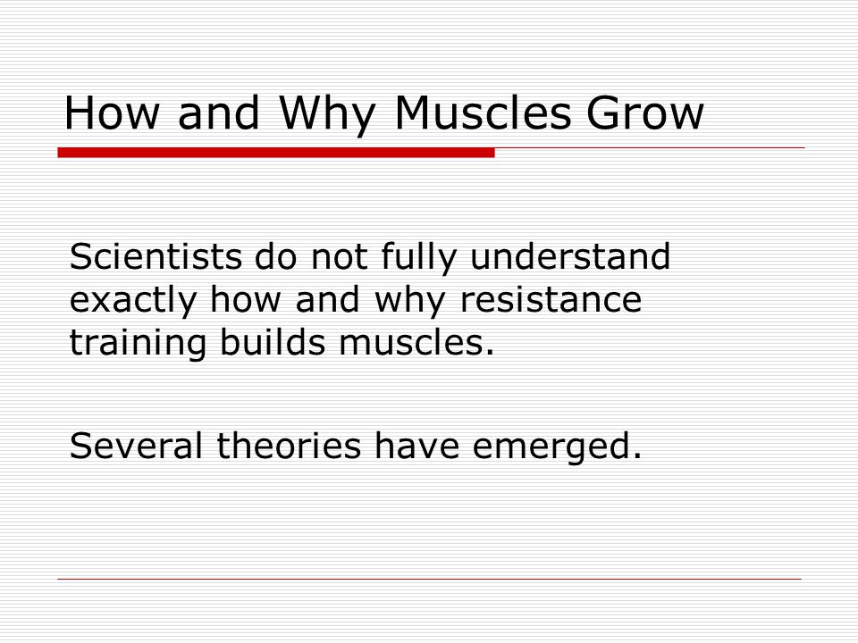 How and Why Muscles Grow