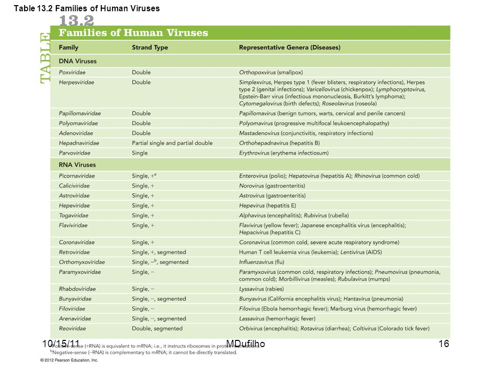 Table 13.2 Families of Human Viruses
