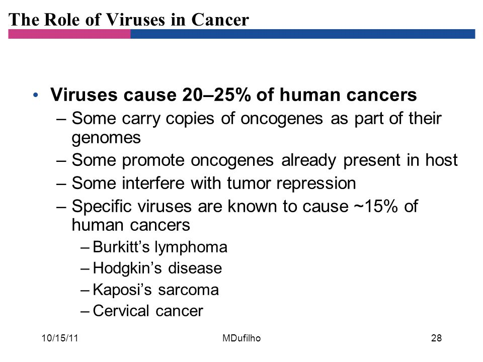 The Role of Viruses in Cancer