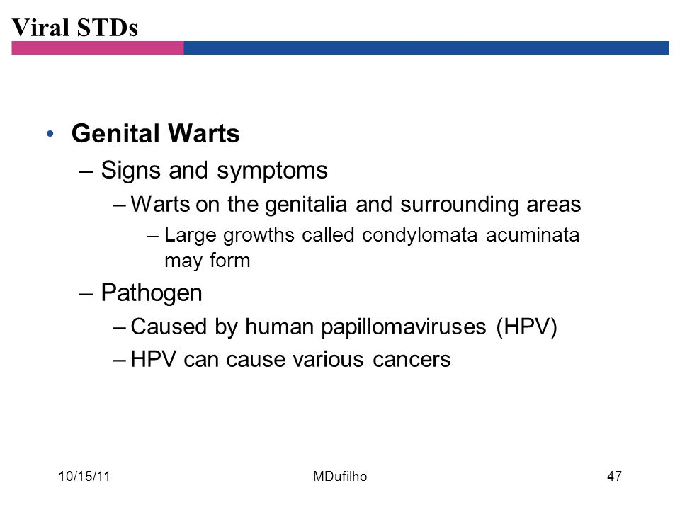 Viral STDs Genital Warts Signs and symptoms Pathogen