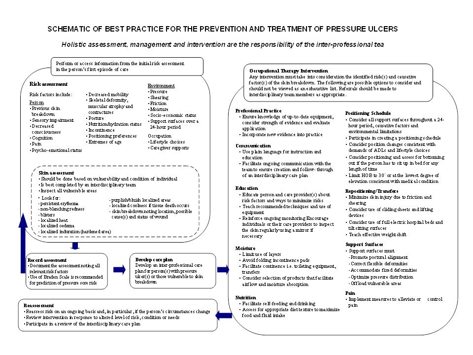 Please refer to your handout so that you are able to read the schematic of Best Practice for the prevention and treatment of pressure ulcers.