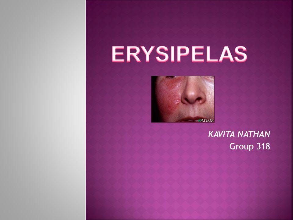 ERYSIPELAS KAVITA NATHAN Group 318